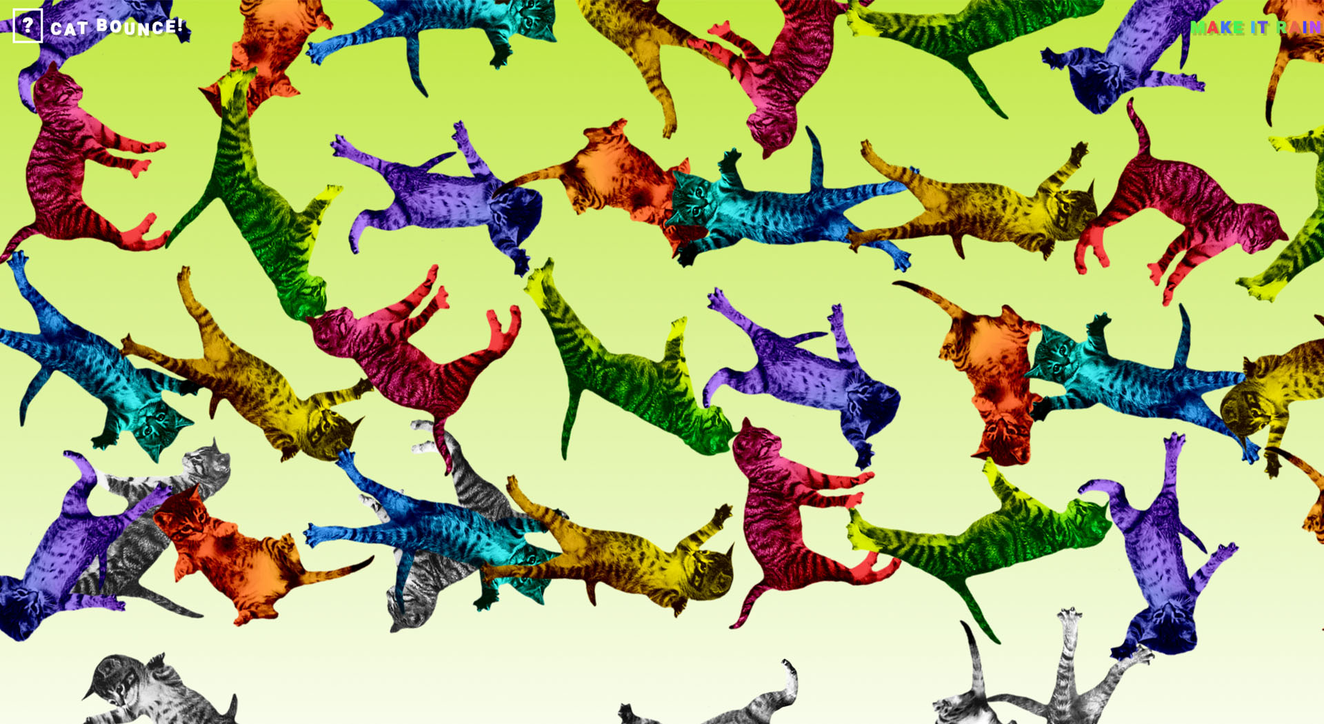 Cat Bounce: laugh website