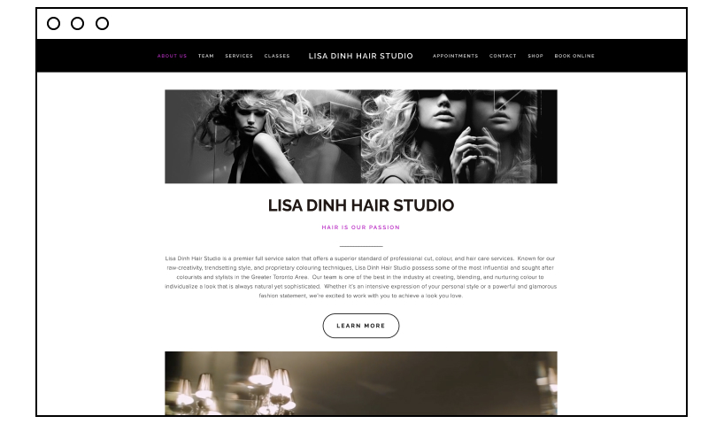 Lisa Dinh Hair Studio website designs